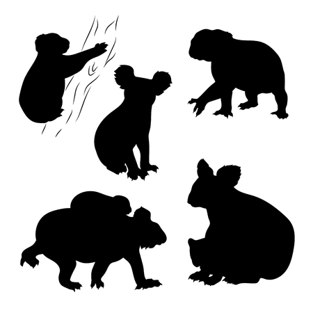 shape cub: Koala set of silhouettes vector. The tree is grouped and you can easily remove it if it is necessary.
