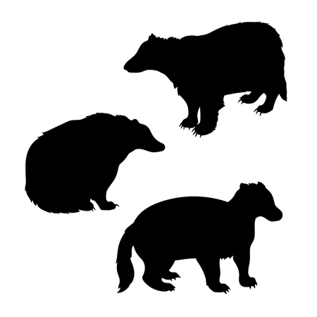 badger: Badger set of silhouettes vector. Collection of animal icons.