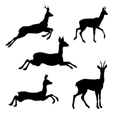 Roe set of silhouettes vector. Collection of animal icons.