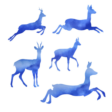 set going: Set of vector watercolor roe. Collection of animal icons.