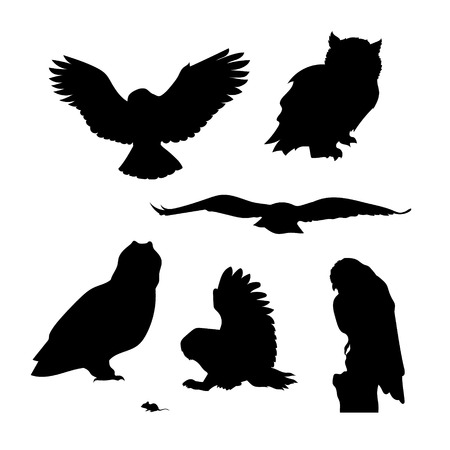 Owl set of silhouettes vector. Collection of animal icons. Vettoriali
