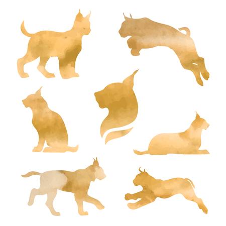 lince rojo: Conjunto de lince vector acuarela. Colección de iconos de animales.