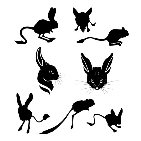 silhouttes: Jerboa set of silhouttes vector. Collection of animal icons. Illustration