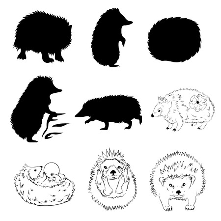 set going: Hedgehog set vector, eps 10. Collection of animal icons.