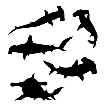 pez martillo: Tiburón martillo conjunto de siluetas vector. Colección de iconos de animales.