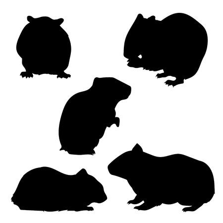 Hamster set van silhouetten, vector. Collectie van dierlijke pictogrammen. Stock Illustratie