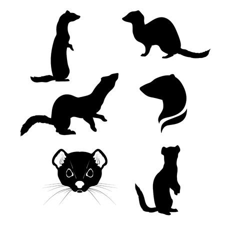 Hermelijn set van silhouetten vector. Verzameling van dierlijke pictogrammen.