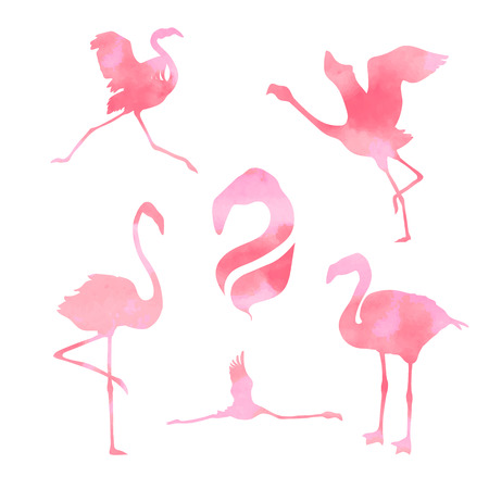 Pink watercolor flamingo, set of vector silhouettes Illustration