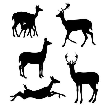 doe: Doe set of silhouettes vector. Collection of animal icons. Illustration