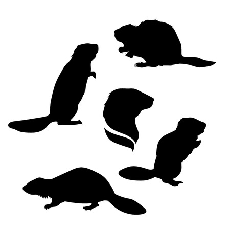 Beaver set of silhouettes vector. Collection of animal icons.