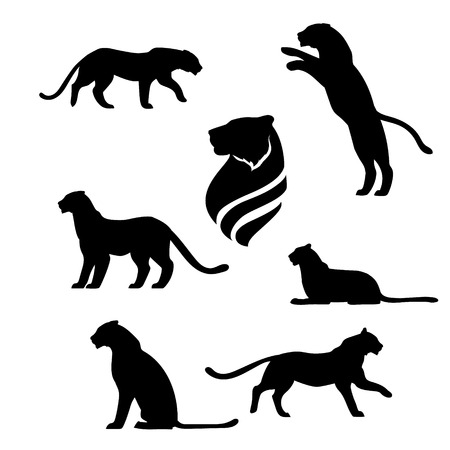 black and white panther: Tiger set of black silhouettes. Icons and illustrations of animals. Wild animals pattern. Illustration