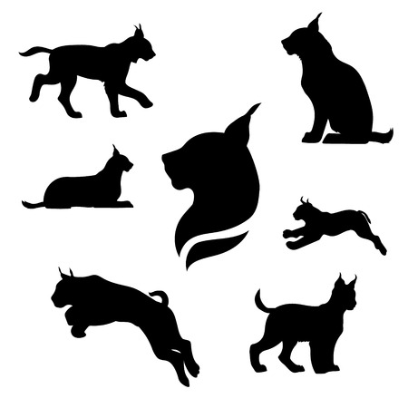 Lynx set of black silhouettes. Icons and illustrations of animals. Wild animals pattern. Vettoriali