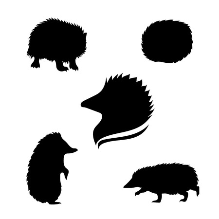 hedgehog: Hedgehog set of black silhouettes. Icons and illustrations of animals. Wild animals pattern. Illustration