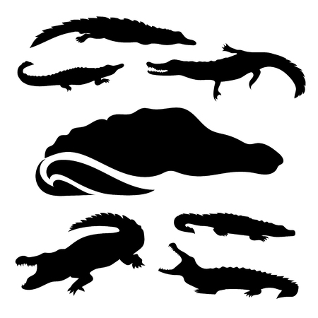 opened mouth: Crocodile set of black silhouettes. Icons and illustrations of animals. Wild animals pattern. Illustration
