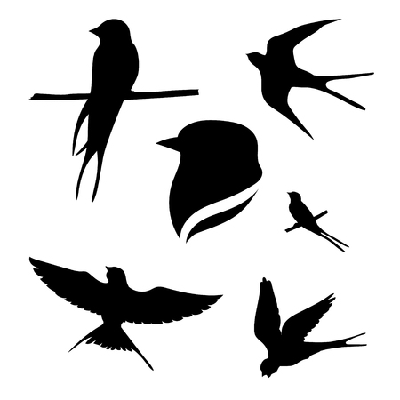 animals in the wild: Svallow set of black silhouettes. Icons and illustrations of animals. Wild animals pattern.