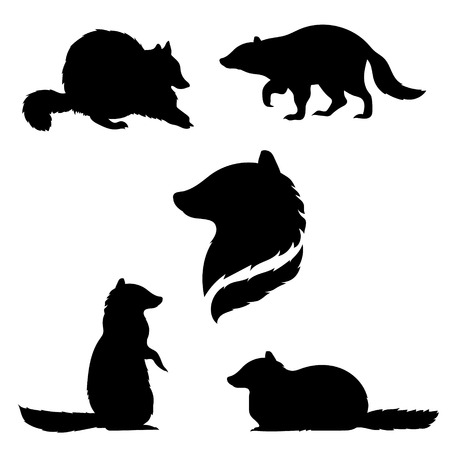 Raccoon set of black silhouettes. Icons and illustrations of animals. Wild animals pattern.