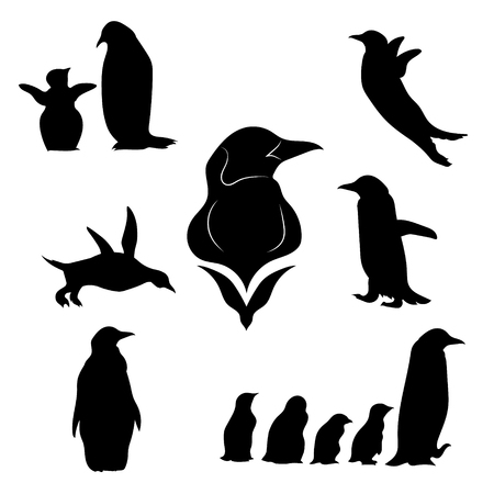 animals in the wild: Penguin set of black silhouettes. Icons and illustrations of animals. Wild animals pattern.