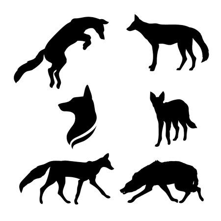 Jackal set van zwarte silhouetten. Pictogrammen en illustraties van dieren. Wilde dieren patroon.