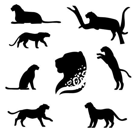 Leopard set van zwarte silhouetten. Iconen en illustraties van dieren. Wilde dieren patroon.