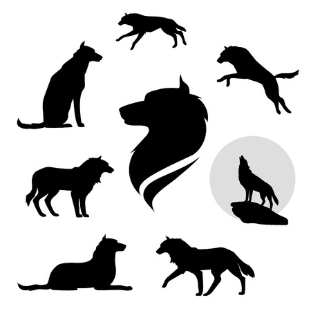 black and white wolf: Wolf set of black silhouettes. Icons and illustrations of animals. Wild animals pattern. Illustration