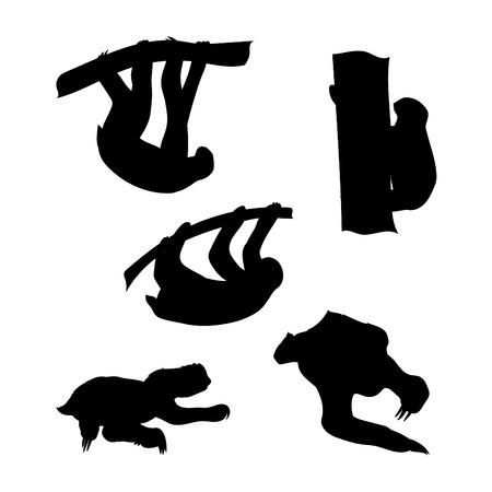 oso perezoso: Iconos Sloth y siluetas. Conjunto de ilustraciones en diferentes poses.