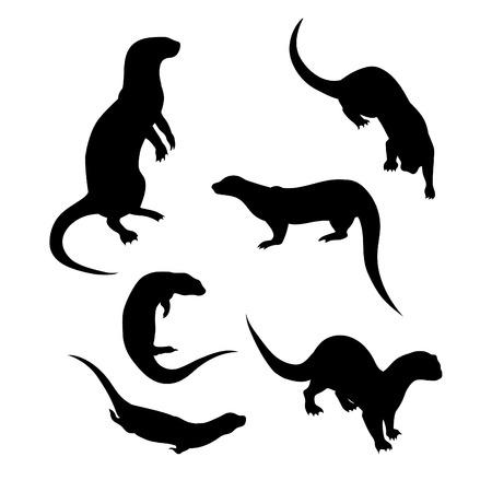 nutria caricatura: Iconos y siluetas de la nutria. Conjunto de ilustraciones en diferentes poses.
