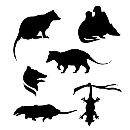 Opossum pictogrammen en silhouetten. Set van illustraties in verschillende poses.