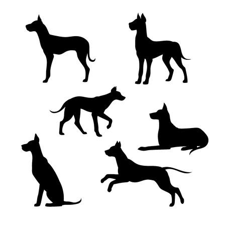 Ras van een hond Great Dane vector pictogrammen en silhouetten. Set van illustraties in verschillende poses.