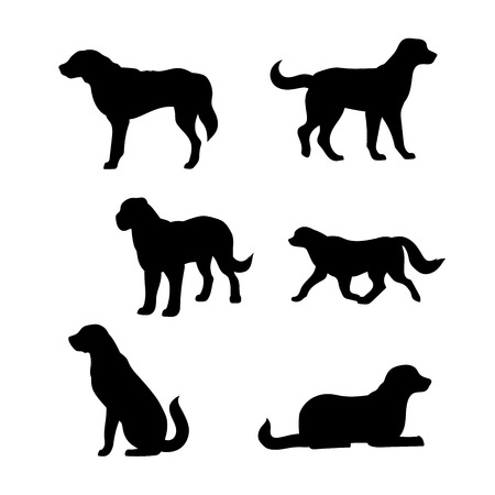 Breed of a dog St. Bernard vector icons and silhouettes. Set of illustrations in different poses. Illustration