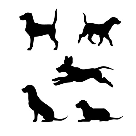 cazador: Raza de un beagle perro vector iconos y siluetas. Conjunto de ilustraciones en diferentes poses. Vectores