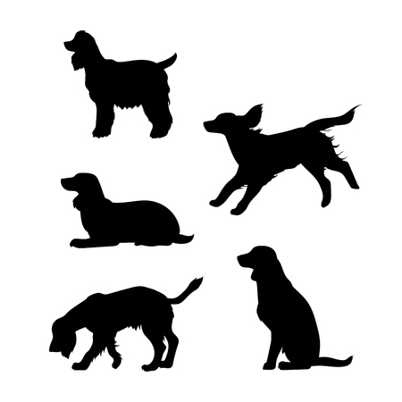 Breed of a dog Cocker Spaniel vector icons and silhouettes. Set of illustrations in different poses. Illustration