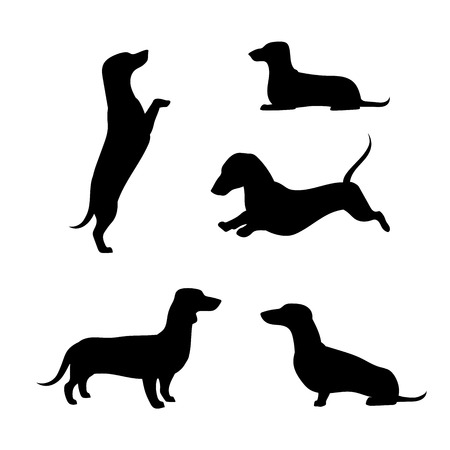 Teckel vector pictogrammen en silhouetten. Set van illustraties in verschillende poses.