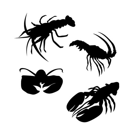 lobster: Lobster vector icons and silhouettes. Set of illustrations in different poses. Illustration