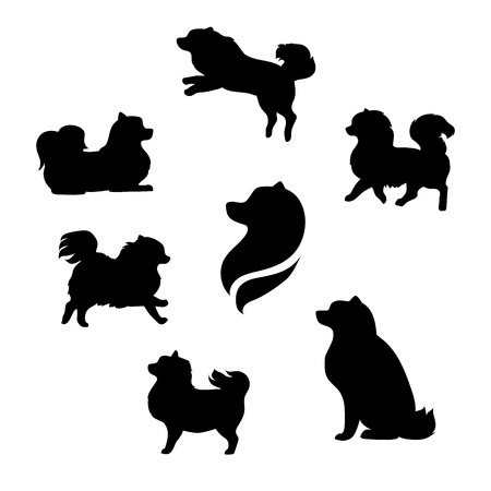 spitz: Ddwarf spitz vector icons and silhouettes. Set of illustrations in different poses.