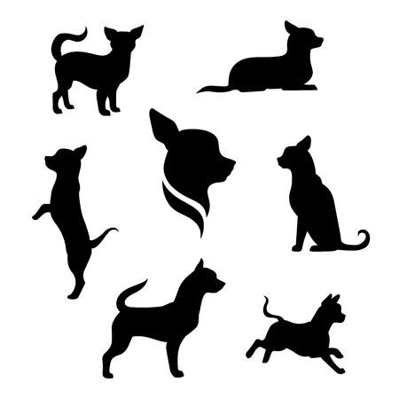 malé: Chihuahua vektorové ikony a siluety malý pes. Sada ilustrace v různých pózách.