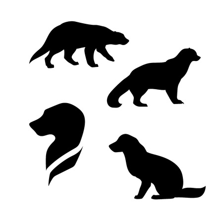 wolverine: Wolverine vector icons and silhouettes. Set of illustrations in different poses.