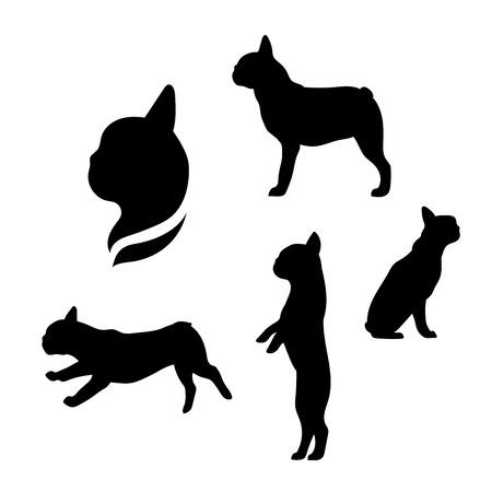 frances: Bulldog francés iconos vectoriales y siluetas. Conjunto de ilustraciones en diferentes poses.