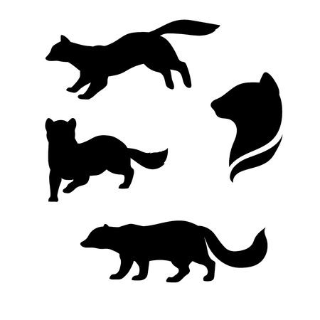 sable: Sable animal icons and silhouettes. Set of illustrations in different poses. Illustration