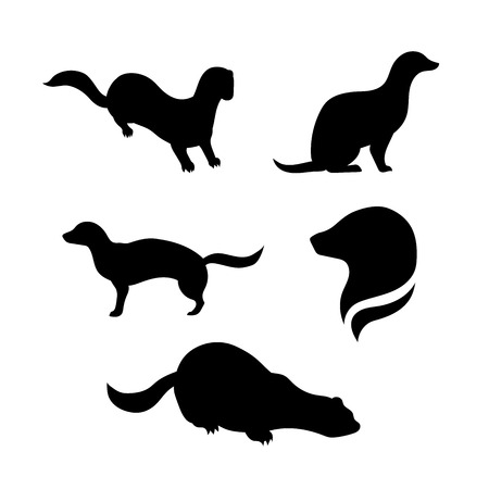 mink: Mink animal vector icons and silhouettes. Set of illustrations in different poses.