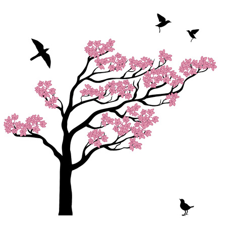 silhouttes: Set of silhouttes of sakura tree with birds. It can be used as a wall decal, as well as illustration on a mug, t-shirt, cloth and so on. Illustration