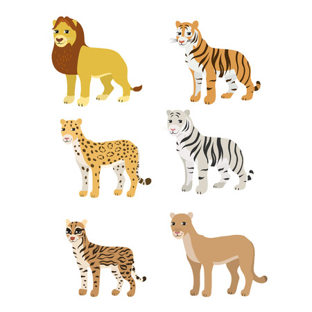 Vector cartoon animals: lion tiger leopard white tiger puma ocelot. The drawn set of wild cats. Collection of stylized predators in a flat style. Illustration