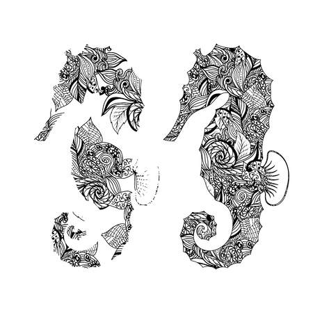 hippocampus: Vector black and white seahorse graphic patterns. Abstract illustrations for your design. Illustration