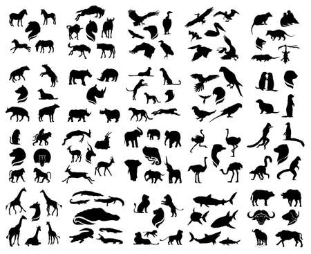 wild: Set of vector african animals silhouettes. The big collection of wild animals. Illustration
