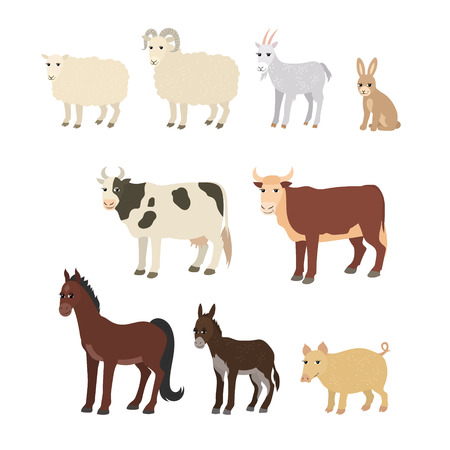 wild donkey: Vector cartoon animals: sheep goat donkey horse cow bull pig rabbit. The drawn set of domestic animals living on the farm. Collection of stylized pets in a flat style. Illustration