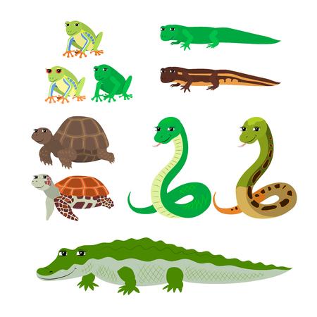 Vector cartoon dieren: boomkikker newt in het water levende schildpad slang krokodil. De getekende set van wilde kruipend gedierte. Verzameling van gestileerde dieren in een vlakke stijl.