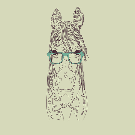 human head: Hipster horse vector illustration. Graphic detailed brown pet. Illustration