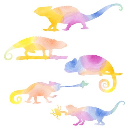 chameleons: Watecolor set of chameleons, raster colored lyzard pattern. Stock Photo