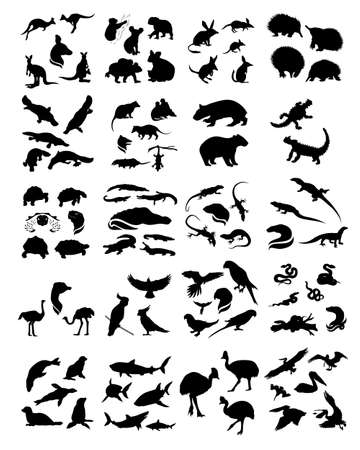 animals in the wild: Big set of australian animals silhouettes. Icons and illustrations of animals. Wild animals pattern.