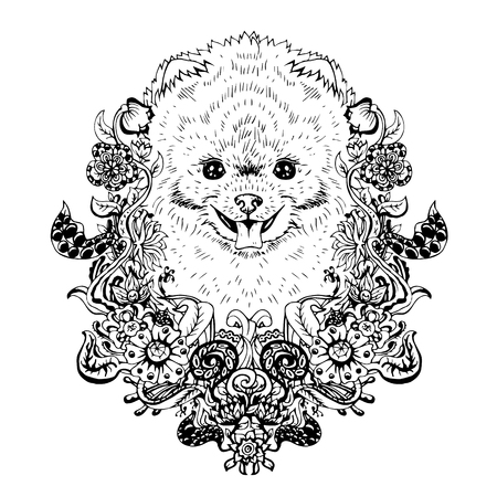 spitz: Spitz graphic dog, abstract vector illustration. It may be used for design of a t-shirt, bag, postcard, a poster, phone case and so on.