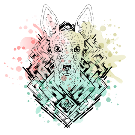fox terrier: Black and white animal Dog head, abstract art, tattoo, doodle cketch. Watercolor splash. Dog breed Toy fox terrier.  Design for shirt, bag, jacket, package, phone case and so on. Vector illustration.
